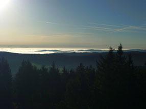 Aussicht vom Plattenbergturm, ( Blatensky Vrch) 1043 m