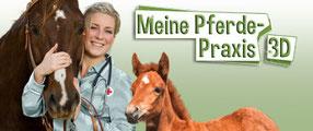 Game Banner Pferde-Praxis 3D