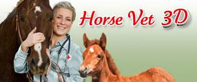Game Banner Horse Vet 3D
