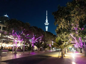 - Sky Tower depuis Viaduct Harbour - Auckland -