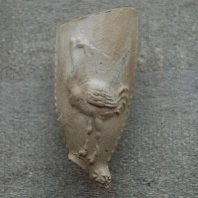 Struisvogel, met hoefijzer in de bek