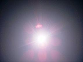 太陽がサンサンと輝きだした!暑い暑い!