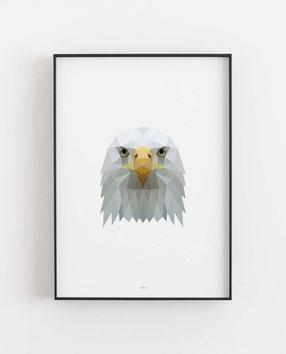 POLY ART Adler