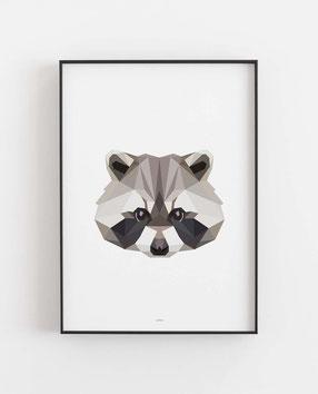 Poly Art Waschbär