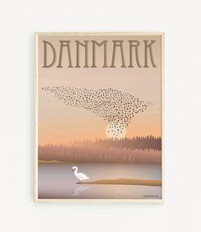 Dänemark Poster Vogelschwarm