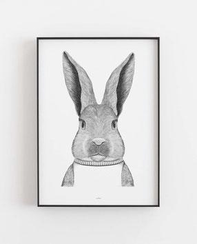 Hase im Pulli- Abstraktes Poster