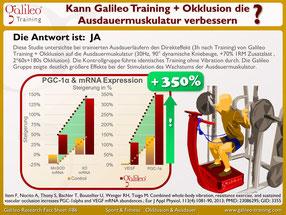 Vibrationsplatten, Test, Vergleiche, Studien, Vibrationstraining, Galileo Training, Preise, kaufen, Vibrationstrainer: www.kaiserpower.com