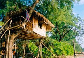 Bambus-Baumhaus