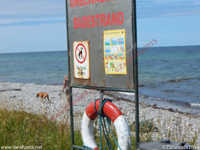 Zarahzetas Irrenalltag mit Strand und Hundeverbot