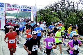 第25回やまねこマラソン大会が開催された=10日午後、上原小学校