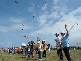 開会式では全国各地の凧に交じり、平和を願う白い鳥凧があげられた=25日午前、南ぬ浜新港地区