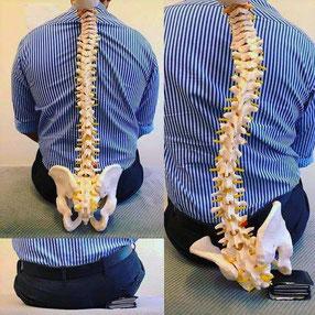 Ich mache eine Haltungsanalyse und gebe meinen Patienten Empfehlungen und Übungen, um die Körperhaltung zu verbessern.