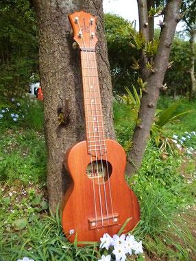 koAloha ukulele