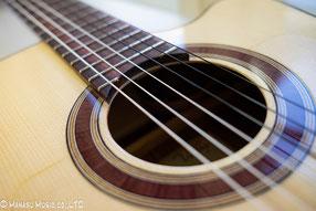 エレキガットギターを導入