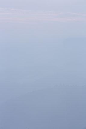 Nebel, Pfälzer-Wald, Sebastian Vogel
