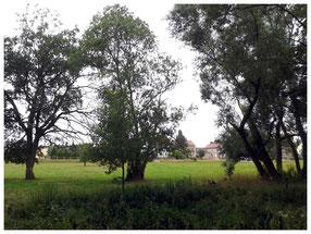 """Einmalig schöne Landschaft im Rödertal, Blick vom """"Kügelgen-Weg"""" über die Große Röder nach Liegau."""