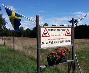 Eingang zum Elinge Älgpark in Ljungby