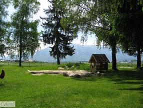 Park mit Bäumen & Spielplatz - Natur für mehr Gesundheit und Wohlbefinden - Foto by Danina's Kunst Werkstatt