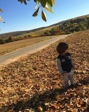 Tolle Herbstdeko Mit Kindern Basteln Diemondbaerens Webseite