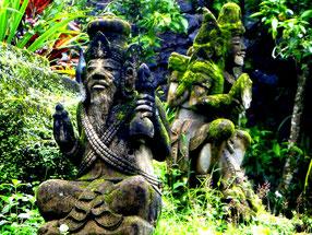 Tempel im balinesischen Regenwald