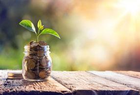 Natur Geld sparen