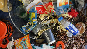 Plastikmüll am Straßenrand