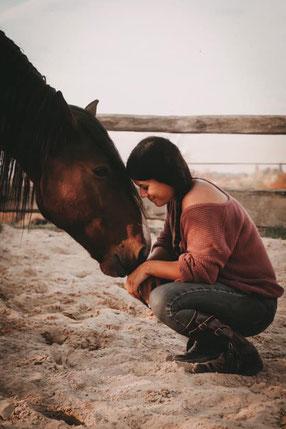 Pferd Mensch Spiegel Vertrauen