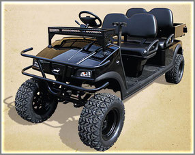 An off-road electric cart like this would help to make Distant Hill Gardens more accessible to everyone.