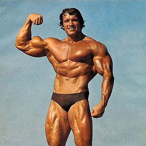 Arnold Schwarzenegger, Lune Noire Capricorne en maison VI.