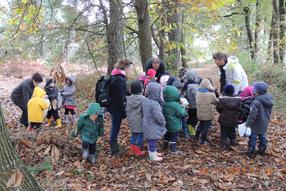La classe dans le petit bois