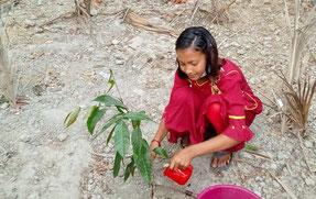 家で木を植えるのは初めて! と喜ぶ女の子