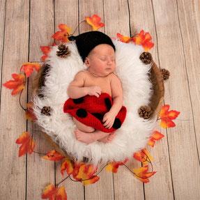baby herfstbladeren