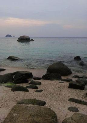 Shark Bay, Ko Tao