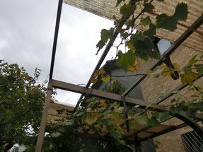 カーポートの屋根が飛んだ