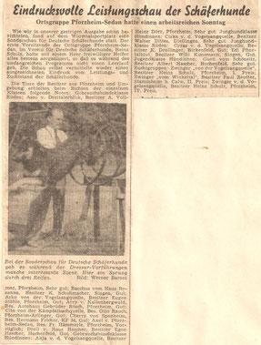 PZ 1955