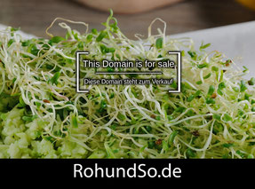 RohUndSo.de  - this domain is for sale