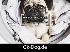 OK-Dog.de - this domain is for sale