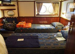 (上)係留されているスターフライヤー (下)ぼくたちの船室330号室。