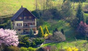 maison traditionnelle de style montagnard