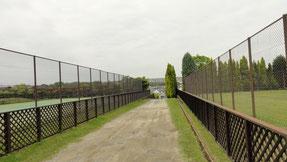 富田林サッカー テニス