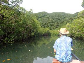 カヌーでマングローブの川で釣りをする男の人