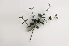 ①フェイクグリーンは小枝までワイヤーになっているもの、3.4本に枝分かれしているものを用意してください(3本用意)