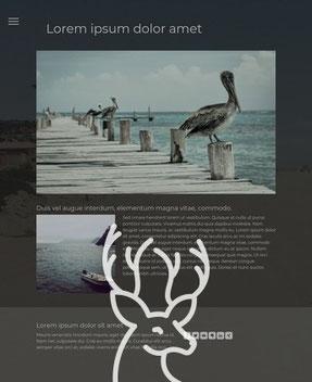 Jimdo Design-Vorlage Cape Town (hirschfrau.net wurde mit Cape Town erstellt)