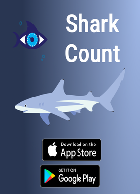 Galapagos Shark Diving -  Shark count