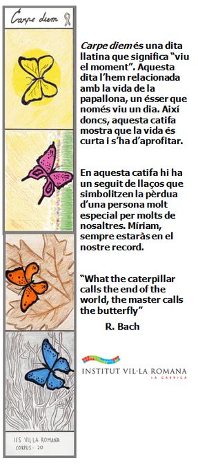 catifa de corpus 2013