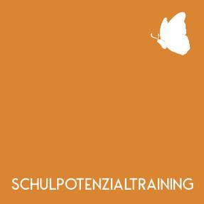 Teaserbild-Schulpotenzialtraining