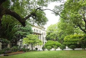 校内では120種以上もの木々がそよぐ