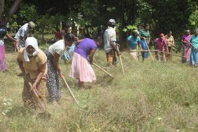 植林地の整地作業。子どもたちの保護者など、多くの地域住民が手伝いに来てくれました