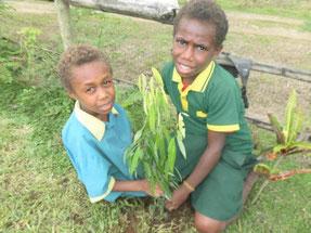 苗木を植え、育てながら木の名前や特徴、育て方の違いも勉強しています