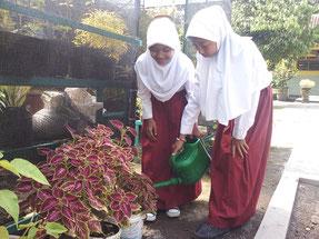 校庭の植物に水やりをするアデラさんと友人